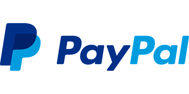 Our clients PayPal logo